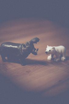 Free Miniature Hippo And Polar Bear Royalty Free Stock Image - 82979476