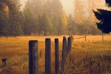 Free Wooden Fence Posts In Pasture Stock Photography - 82979942