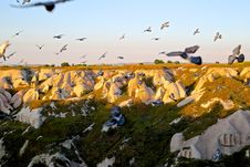 Free Motion Shot Of Birds Flying On Mid Air Over Mountains During Sunset Royalty Free Stock Images - 82981209