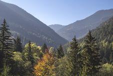 Free Autumn Foliage In Mountain Valley Stock Image - 82981331