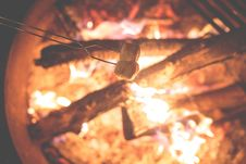 Free Marshmallows On A Campfire  Royalty Free Stock Photos - 82981448