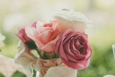 Free Red Rose Pink Rose And White Rose In Close Up Photo Royalty Free Stock Photography - 82981877