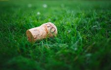 Free Wine Cork On Green Grass Royalty Free Stock Photography - 82983277