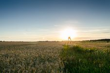 Free Green Fields During Sunset Royalty Free Stock Photos - 82984078