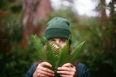 Free Man With Fern Leaves Stock Photography - 82985212