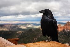 Free Raven On Desert Mesa Stock Photos - 82985373