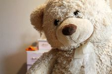 Free Teddy Bear  Stock Images - 82985624