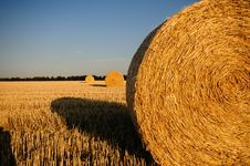 Free Rolls Of Hay In The Field Royalty Free Stock Images - 82986329