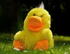 Free Yellow Plush Duck Toy Stock Photo - 82986510