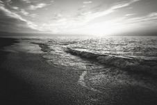 Free Waves On Beach In Black And White Royalty Free Stock Photo - 82986535