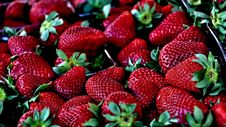 Free Ripe Strawberries In Punnet Stock Images - 82986864