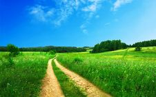 Free Road Through Meadow Stock Photography - 82987632