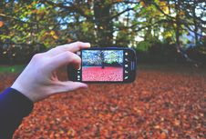 Free Person Holding Black Android Smartphone Taking Picture On Tree During Day Time Stock Image - 82987661