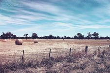 Free Hay Bales In Countryside Field Stock Images - 82987834