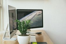 Free Workstation With Monitors And Houseplants Royalty Free Stock Photos - 82988598