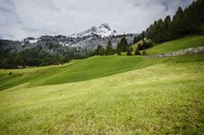 Free Green Grass Near Green Trees During Daytime Royalty Free Stock Photo - 82990035