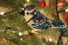 Free Blue Jay Ornament Royalty Free Stock Image - 82991526