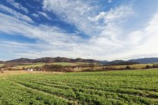 Free Green Crops Under White Clouds And Blue Sky During Daytime Stock Image - 82992161