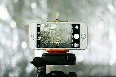 Free Gold Iphone 5s Turned On Royalty Free Stock Photography - 82992917