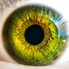 Free Macro Of Green Eye Royalty Free Stock Photography - 82993207