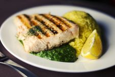 Free Grilled Salmon Plate Royalty Free Stock Photography - 82994377