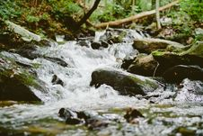 Free Water Rapids In Stream Stock Images - 82994504