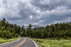 Free Road Through Forest In Countryside Royalty Free Stock Photos - 82994508