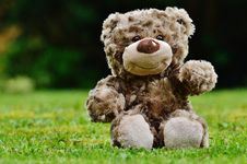 Free Brown Teddy Bear Sitting On Grass Royalty Free Stock Photography - 82996627