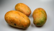 Free Three Mangoes Isolate Stock Photography - 836772