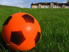 Free Ball On The Grass Stock Image - 838531