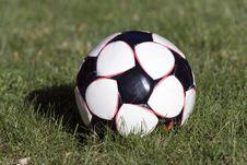 Free Soccer Ball Stock Image - 839091