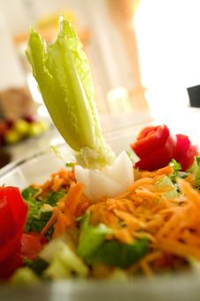 Free Salad Stock Photography - 8300052