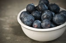 Free Close-up Of Blueberries In A Bowl Stock Images - 8301424