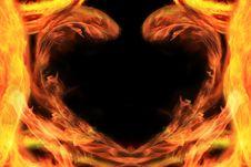 Free Heart Stock Photos - 8302113