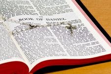Free Rosary Bible Page - Daniel Stock Images - 8302454