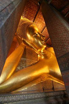 Free Gold Buddha Royalty Free Stock Image - 8302526