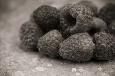 Black And White Raspberries Royalty Free Stock Image