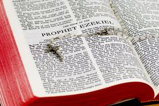 Free Rosary Bible Page - Ezekiel Stock Photo - 8302570
