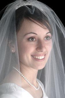 Free Bride Portrait Stock Photo - 8303060