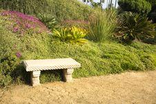Free Tropical Succulent Garden Stock Photos - 8303203