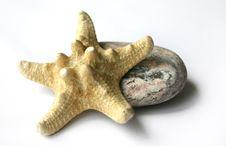 Stone And Starfish Stock Photography