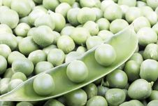Free Green Peas Stock Photos - 8303463