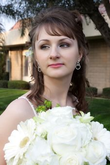 Free Bride In Park Royalty Free Stock Images - 8304269