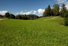 Free Beautiful Alpine Meadow Stock Photos - 8304323
