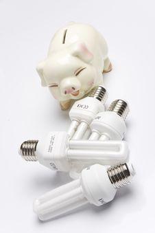 Free Light Bulb Royalty Free Stock Photos - 8304758