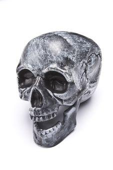 Free Skull Stock Photo - 8304770