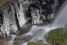 Free Frozen Creek And Icicles Stock Photos - 8305093