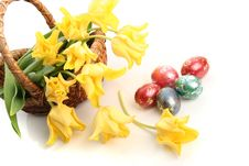 Free Eggs And Tulips Stock Photos - 8306343