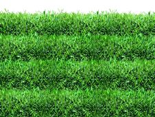 Free Spring, Green Grass Background Stock Photos - 8306973