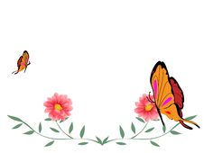 Free Butterfly And Flower Royalty Free Stock Photography - 8308847